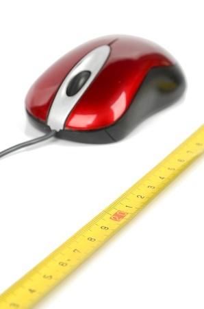 Prise de mesure d'une souris